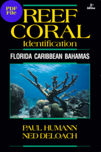 Coral_Cover2013_FCB_Coral_Cover2003.qxd