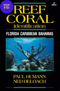 Coral_Cover2013_FCB_Coral_Cover2003.qxd